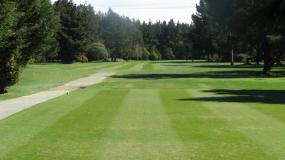 Find out more about McLeans Island Golf Club